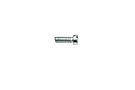 MG Midget Dashpot and float chamber screw 61-74